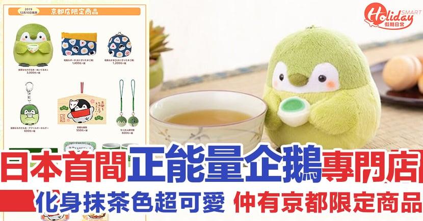 【日本限定】 正能量企鵝首家專門店即將開幕 化身抹茶色系超可愛!