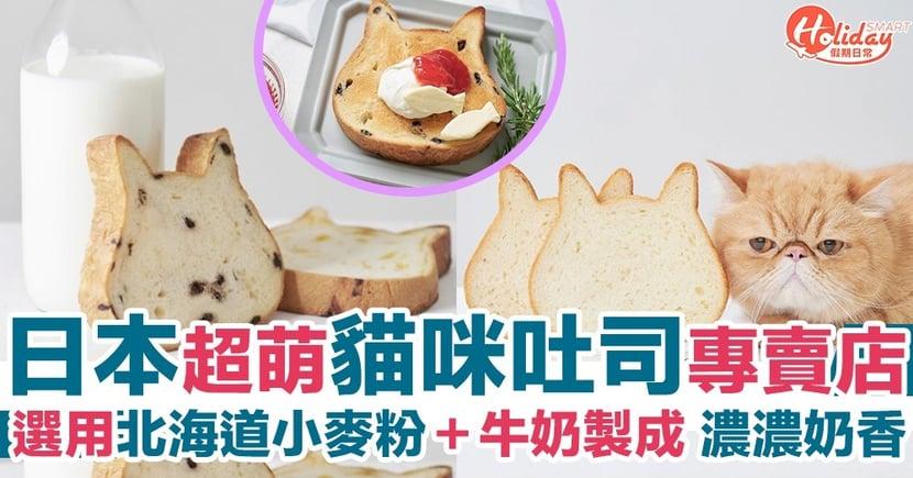日本超可愛貓咪吐司~採用北海道麵粉同牛奶製成!買嚟早餐食超治癒!