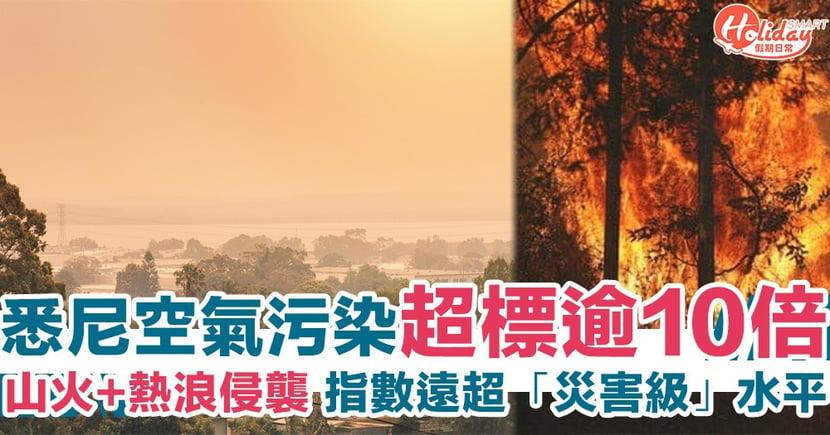 【澳洲山火】遠超「災害級」水平!悉尼空氣污染超標逾10倍 天空現「橙色霧霾」/逾2千隻樹熊遇難