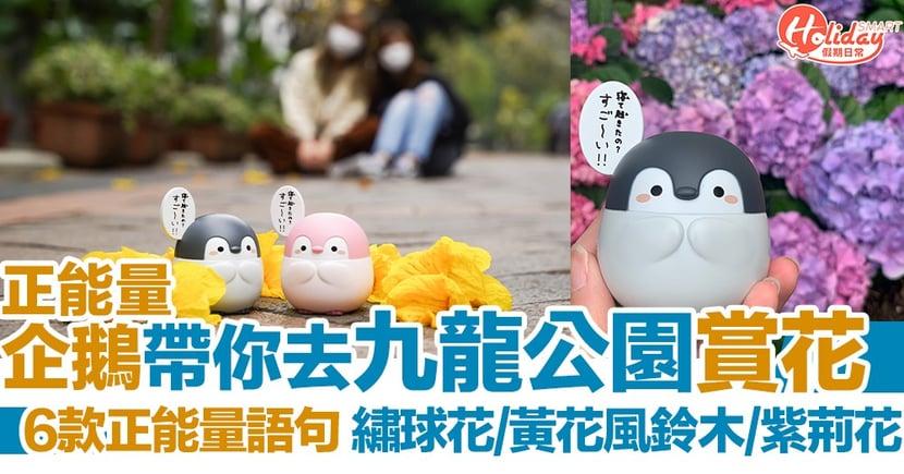 【最新扭蛋】正能量企鵝帶你遊九龍公園 春日賞花打卡好寫意