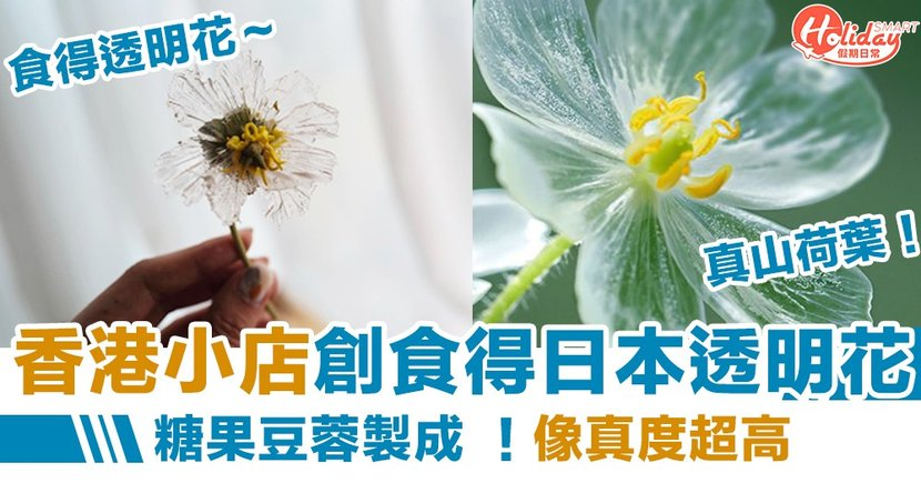 香港小店自創食得日本透明花!糖果豆蓉製成  開班教授