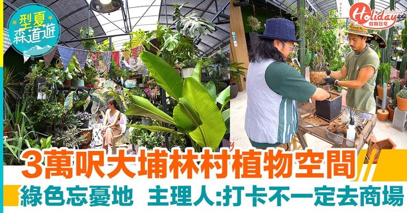 【大埔好去處】3萬呎大埔林村植物空間!綠色忘憂地 主理人: 打卡不一定去商場