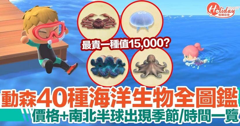 【動物之森潛水攻略】40種海洋生物圖鑑!價格、南北半球出現季節、時間一覽!