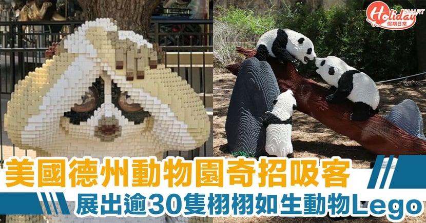 動物都失業?美國德州動物園奇招吸客 展出逾30隻栩栩如生Lego動物