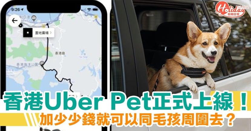 香港Uber Pet正式上線!加多廿蚊就可以帶埋寵物周圍去?