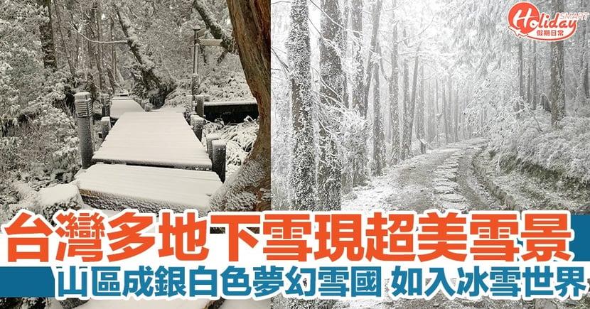 寒流襲台!台灣多地下雪!北部地區成雪國 現超美雪景!