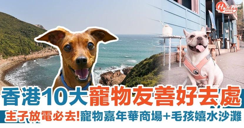 10大寵物友善好去處|主子放電必去:寵物嘉年華商場+毛孩嬉水沙灘