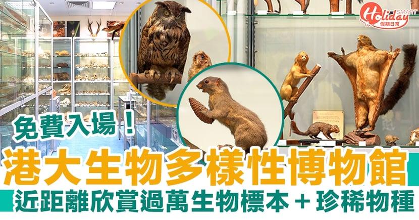 港大生物多樣性博物館 免費入場!過萬生物標本+珍稀物種