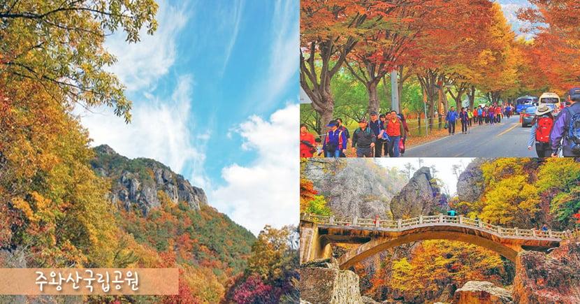 秋天正悄悄來臨了~觀賞紅葉必到韓國周王山國立公園!走進浪漫迷人的楓葉世界~