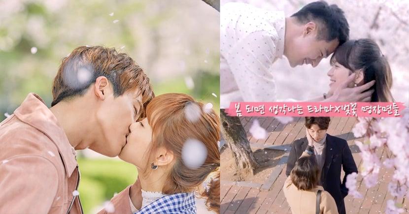 看著就想要戀愛啦~漫天櫻花雨超浪漫!櫻花樹下7個讓人心動的韓劇名場面!