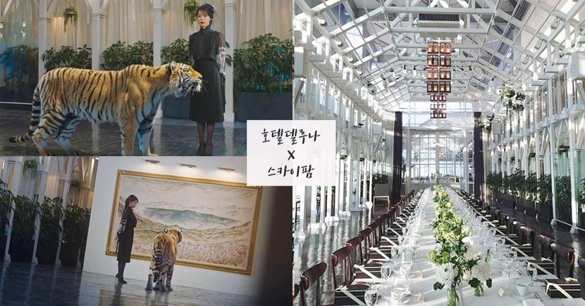 《德魯納酒店》長白山畫作放置地!為韓國高空玻璃屋餐廳The Skyfarm,《W兩個世界》也曾取景~