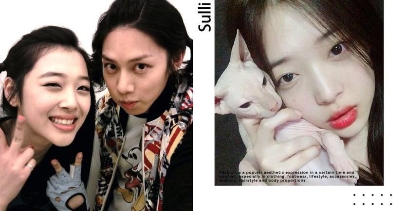 韓網熱議/SJ希澈收養雪莉生前愛貓!?直播中意外出鏡,兄妹情超感人⋯