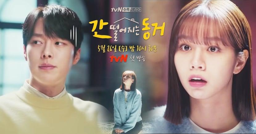 tvN新劇《我的室友是九尾狐》最新預告!惠利聽到張基龍年紀瞬間慘敗、竟稱對方「老人」